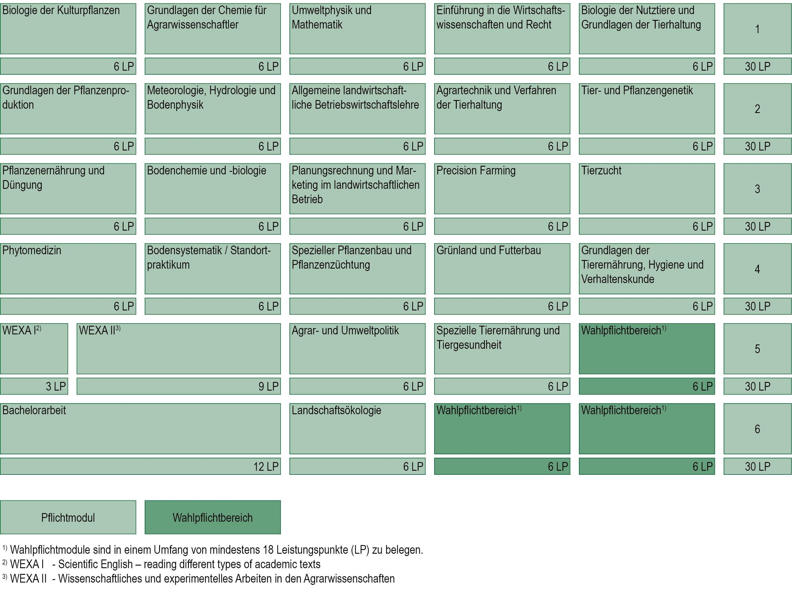 Test Detail reguläre Studiengänge - University of Rostock