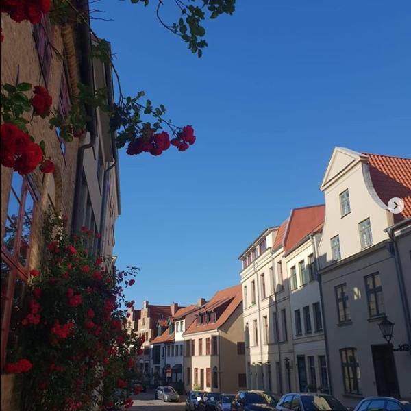 Studienberatung Uni Rostock