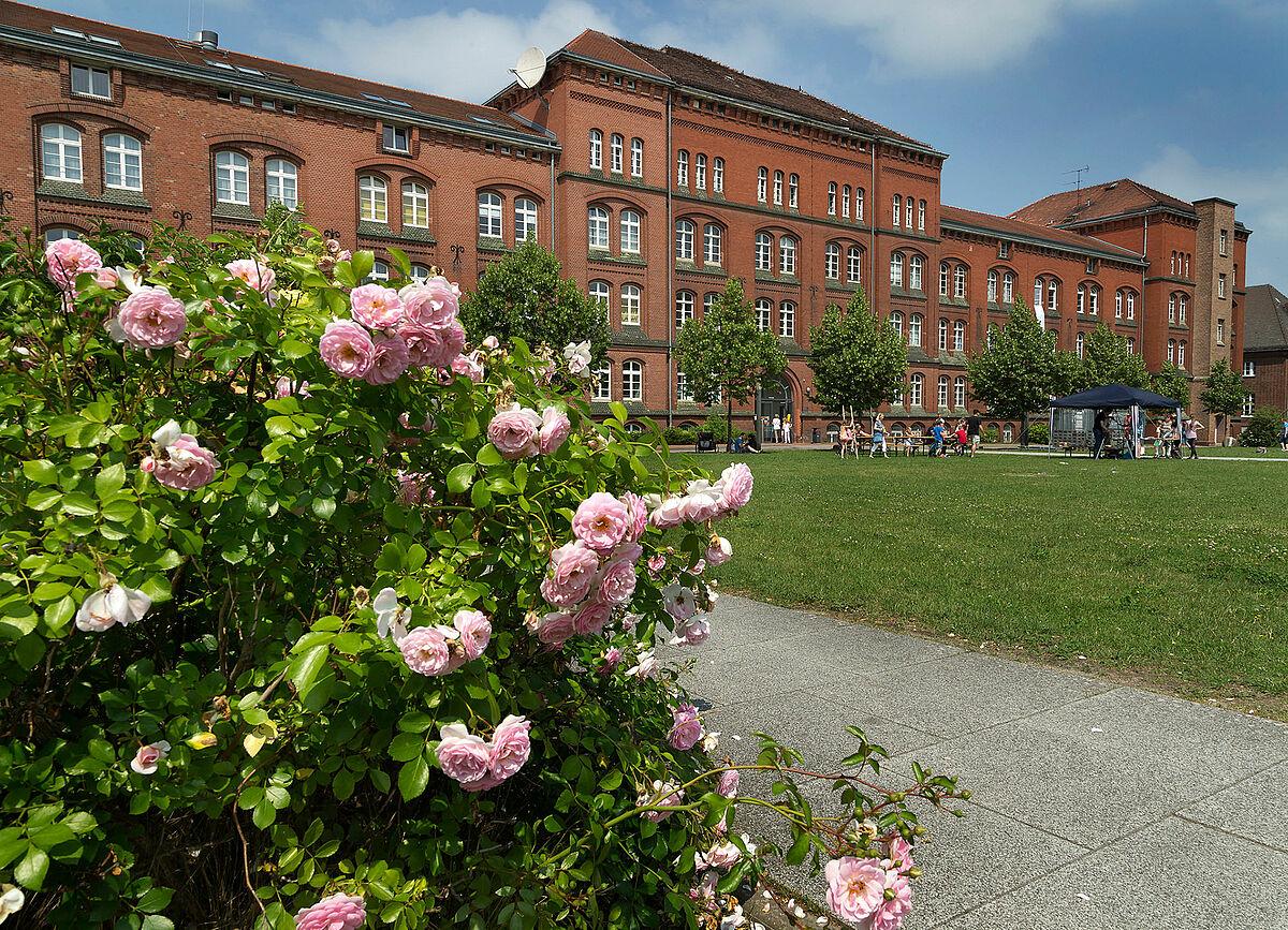 Juristische Fakultät Rostock